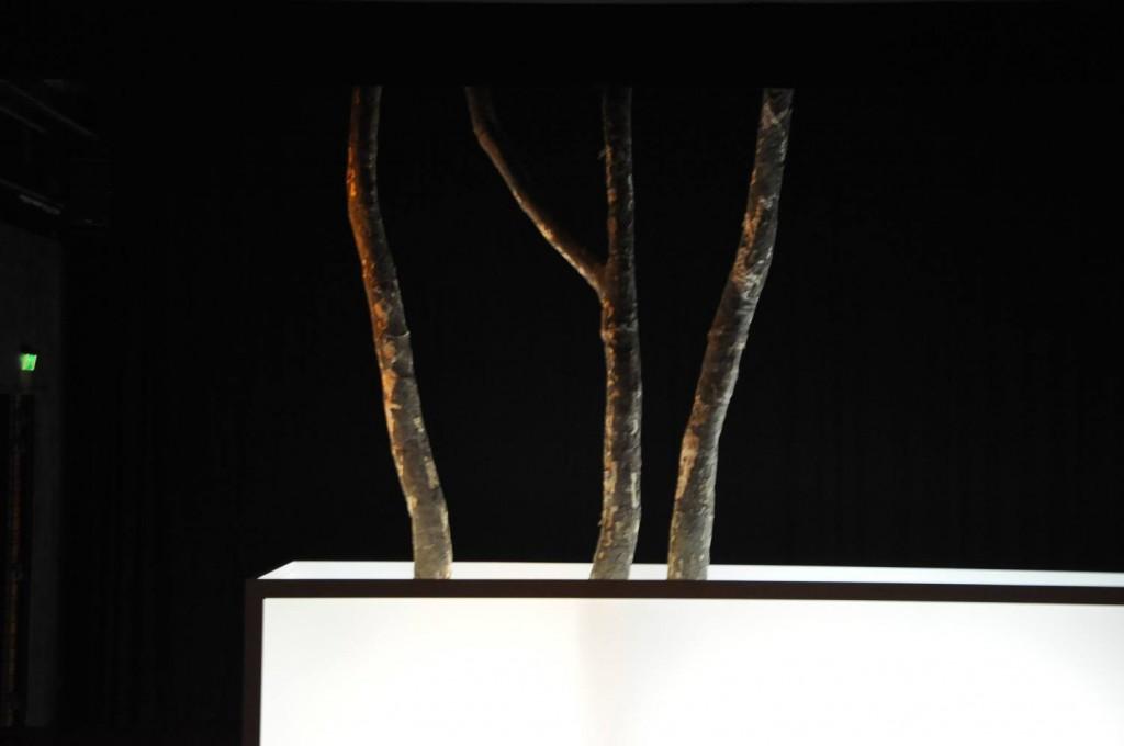 """Decor-platanen voor de voorstelling 'Hunker"""" van Tatjana van Walsum."""