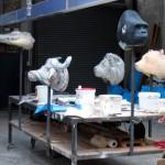 Dierenmaskers rekwisieten voor Sonnevlanck